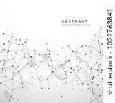 abstract plexus structure of...   Shutterstock . vector #1022763841