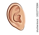 ears are one of the organs... | Shutterstock .eps vector #1022773384