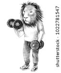hand drawn dressed up lion... | Shutterstock . vector #1022781547