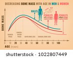 decreasing bone mass with age... | Shutterstock .eps vector #1022807449