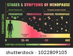 stages and symptoms of... | Shutterstock .eps vector #1022809105