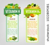 vitamin k and vitamin b9... | Shutterstock .eps vector #1022809381