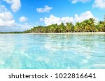 Secluded Beach On Saona Island...