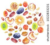 dry fruits and nuts round shape ...   Shutterstock . vector #1022833231