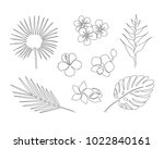 set of hand drawn tropical...   Shutterstock .eps vector #1022840161