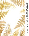 Gold Fern Frame Vector...