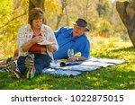johannesburg  south africa  05...   Shutterstock . vector #1022875015
