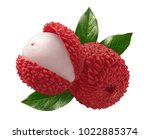 Lychee Composition Isolated On...