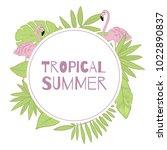 Frame Vector Tropical Summer....
