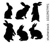 silhouette rabbit  vector... | Shutterstock .eps vector #1022907991