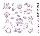 vector collection of sketches... | Shutterstock .eps vector #1022909389