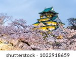 osaka castle light up  sakura... | Shutterstock . vector #1022918659