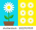 white daisy chamomile icon set. ... | Shutterstock .eps vector #1022919535