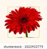 gerbera flower background | Shutterstock .eps vector #1022922775