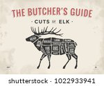 cut of meat set. poster butcher ... | Shutterstock .eps vector #1022933941