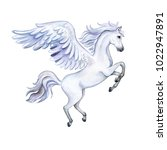 Pegasus With Wings Isolated On...