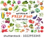 watercolor painted collection... | Shutterstock .eps vector #1022953345