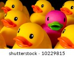 Purple Rubber Duck Surrrounded...