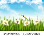 nature background with green... | Shutterstock .eps vector #1022999821