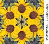 Kaleidoscopic Image Of Sunflower