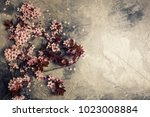 branch with cherry pink... | Shutterstock . vector #1023008884