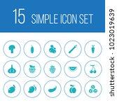 set of 15 vitamin icons set.... | Shutterstock .eps vector #1023019639
