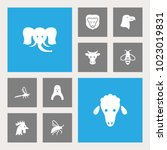 set of 10 zoo icons set.... | Shutterstock .eps vector #1023019831