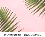 green palm leaf on pink... | Shutterstock . vector #1023022489