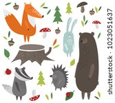 set of the forest animals | Shutterstock .eps vector #1023051637