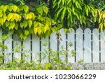 white wooden fence  with green... | Shutterstock . vector #1023066229
