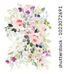 watercolor floral illustration... | Shutterstock . vector #1023072691