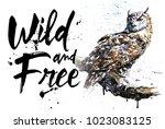 owl watercolor birds animals... | Shutterstock . vector #1023083125