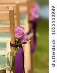 pink roses tied to a chair for... | Shutterstock . vector #1023113989