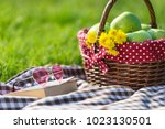 picnic basket and blanket | Shutterstock . vector #1023130501