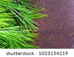 metal oxid and green | Shutterstock . vector #1023154219