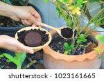 coffee ground  coffee residue... | Shutterstock . vector #1023161665