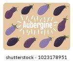 aubergine vegetable card....   Shutterstock .eps vector #1023178951
