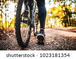low angle view of cyclist...   Shutterstock . vector #1023181354