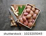 fresh from the farm potatoes... | Shutterstock . vector #1023205045