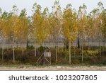 deer stand  type of hunter's...   Shutterstock . vector #1023207805