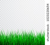 green grass border set  vector... | Shutterstock .eps vector #1023220654