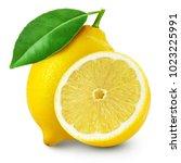 lemon fruit slice with leaf... | Shutterstock . vector #1023225991