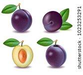 set of purple plum with green... | Shutterstock .eps vector #1023253291