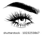 lady beauty full lashes and... | Shutterstock .eps vector #1023253867