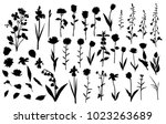 collection of flower... | Shutterstock .eps vector #1023263689