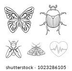 wrecker  parasite  nature ... | Shutterstock .eps vector #1023286105