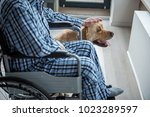 disabled male sitting in... | Shutterstock . vector #1023289597