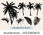 beautiful hand drawn botanical... | Shutterstock .eps vector #1023382819