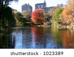 autumn in central park  new york | Shutterstock . vector #1023389