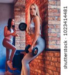Small photo of Two sporty girls dressed in sportswear with barbells posing in a